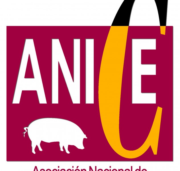 Logo Anice 1 m