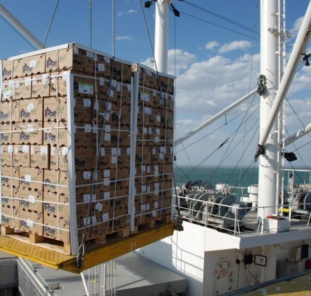 exportacion (FILEminimizer)