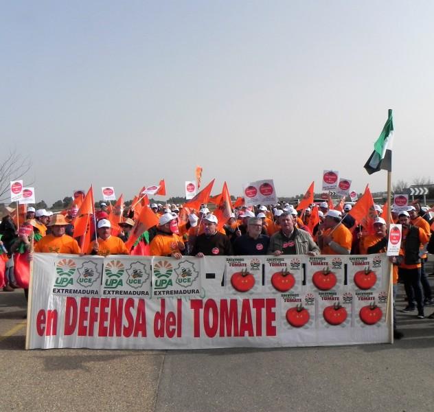 tomaterios