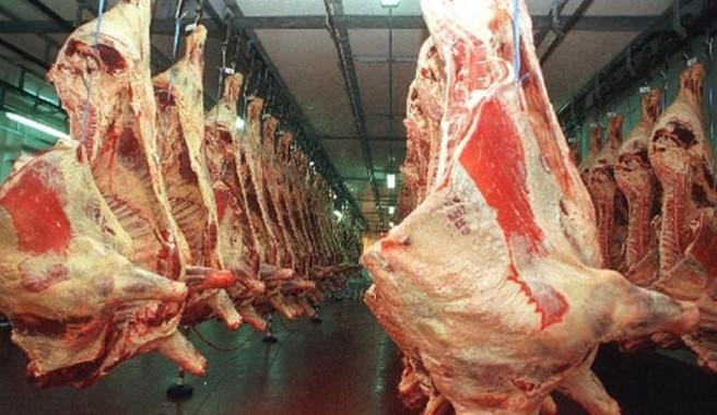 Carne (FILEminimizer)