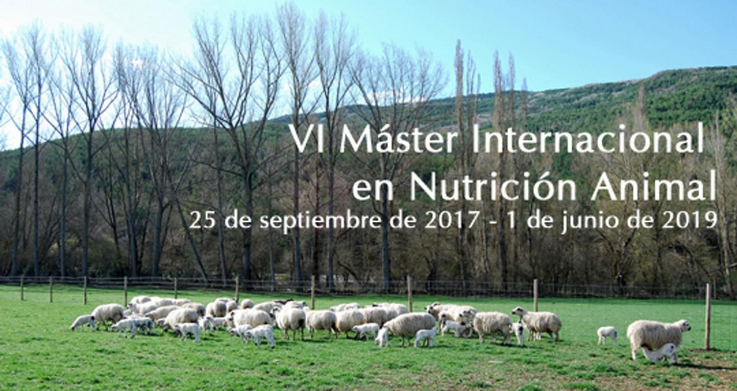 Abierto el plazo para matricularse en el VI Máster Internacional en Nutrición Animal