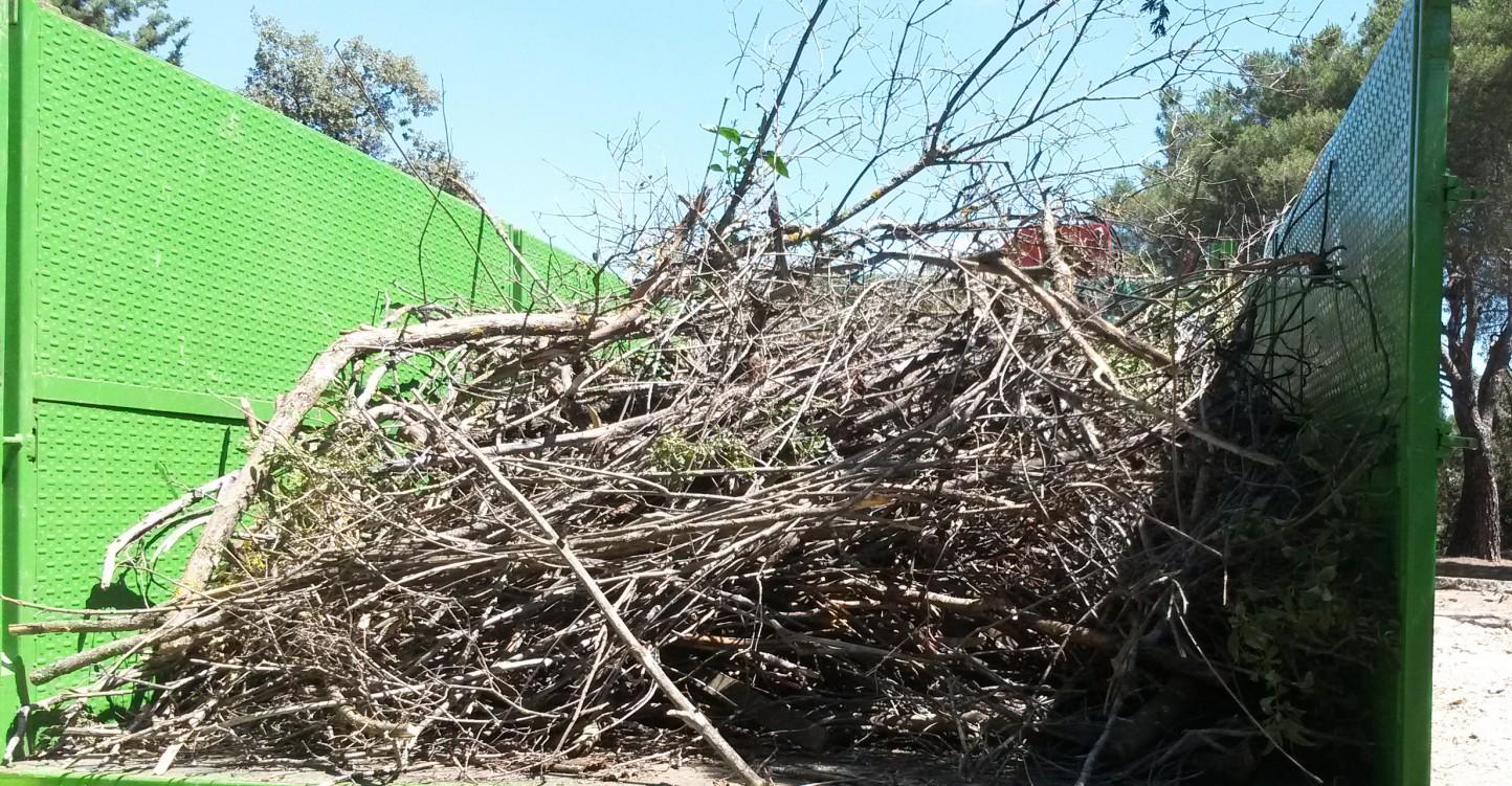 Jornada-taller para impulsar el uso de residuos de podas y arranques agrícolas en el sector ganadero
