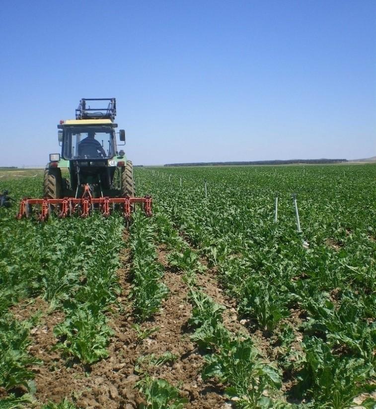 Castilla y León convoca ayudas por 40 M€ a medidas de Agroambiente y Clima y Agricultura ecológica