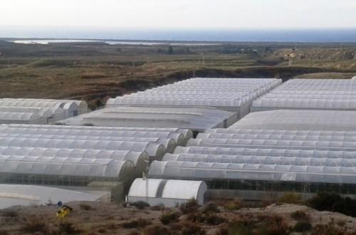 Ahorro y eficiencia energética en invernaderos