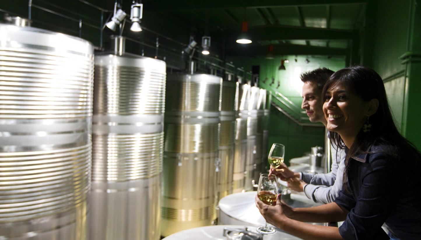 Visitas a bodegas. Ruta do Viño Rías Baixas. Copy Chou Pesquera