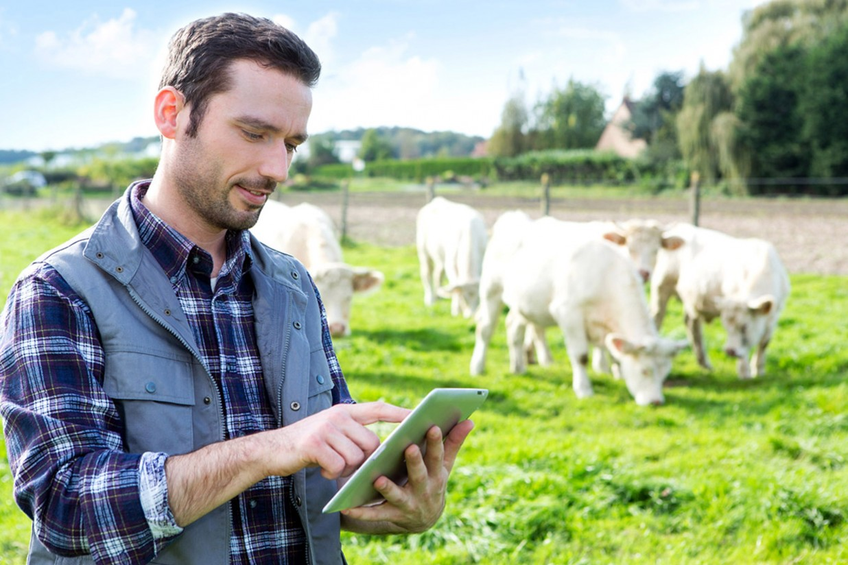 Mercatrace, startup de identificación del recorrido de los alimentos, consigue una financiación de casi 90.000€