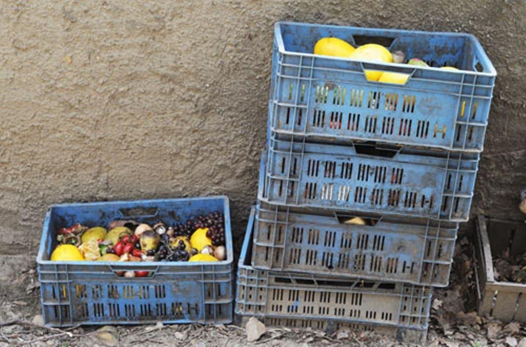 El PE  propone medidas para reducir las 88 Mt  de alimentos que la UE desperdicia cada año a la mitad