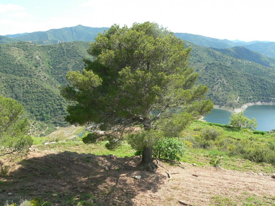 Jornada sobre espacios naturales protegidos y la propiedad privada