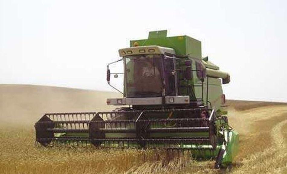 El comercio rebaja la cosecha nacional de cereales de invierno a 13,32 Mt, un 30,9% menos