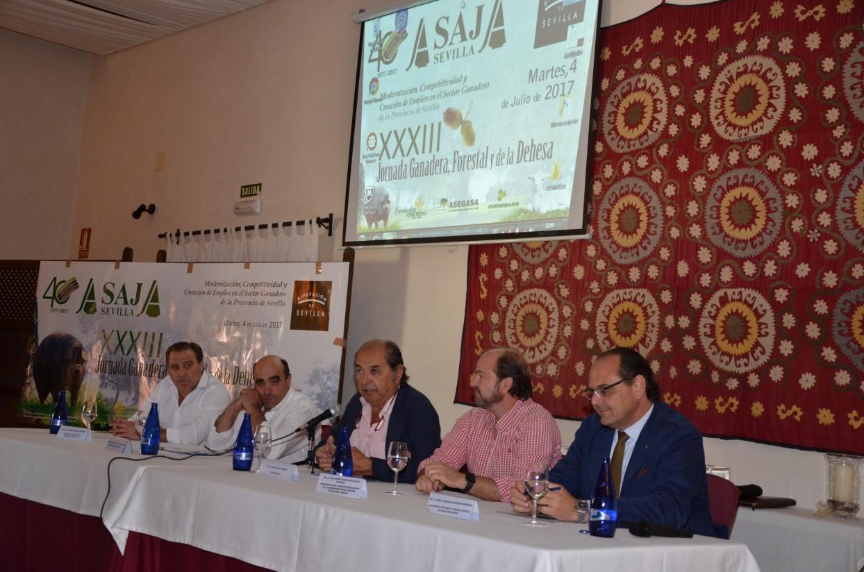 Jornada en Sevilla: el sector ibérico de dehesa supera las 700.000 cabezas certificadas