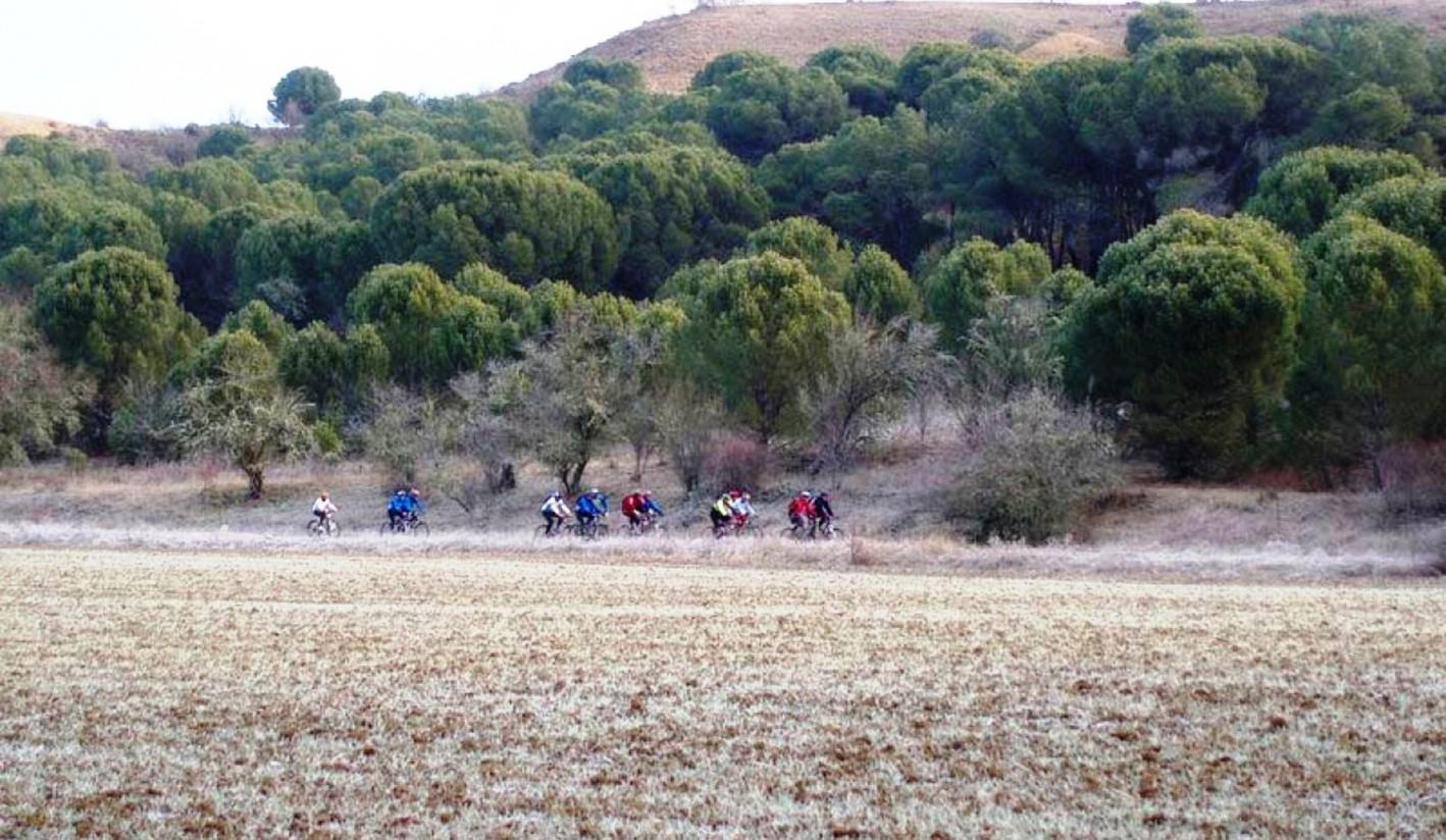 Varias asociaciones denuncian que el bosque zamorano de Montelarreina se encuentra amenazado