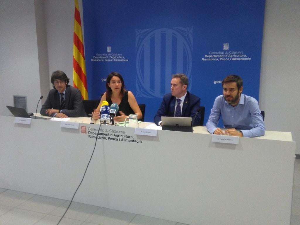 Menos manzanas y algo más de pera en Cataluña durante la nueva campaña