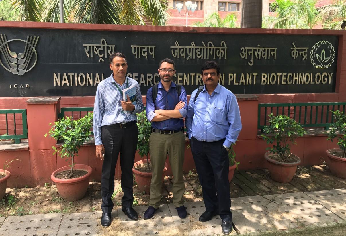 Seipasa y el IARI avanzan en el desarrollo de un nuevo biopesticida natural