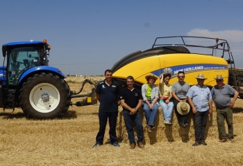 New Holland BigBaler 1290 Plus, empacando en condiciones de extrema sequía