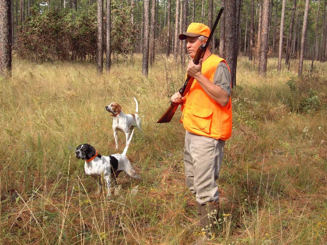 España cuenta con más de 300.000 cazadores federados