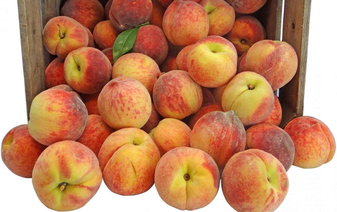 Ya se pueden notificar las nuevas retiradas de fruta dulce, 20.000 t más de melocotón y nectarinas