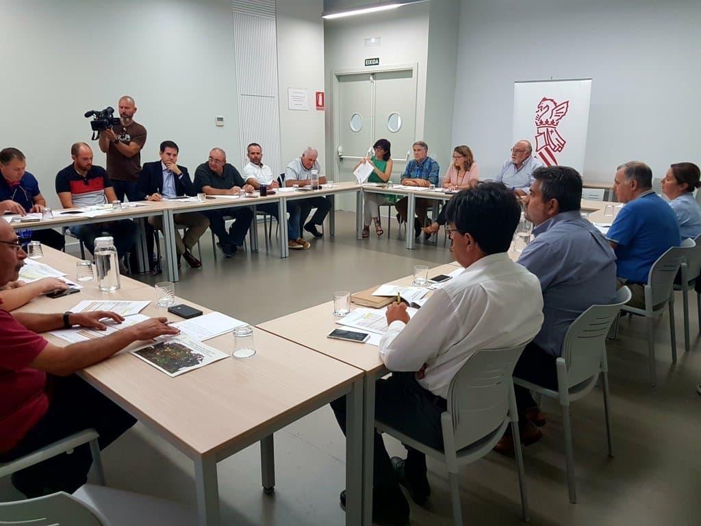 Un 20,3% menos de cosecha de cítricos en el primer aforo de la Comunidad Valenciana