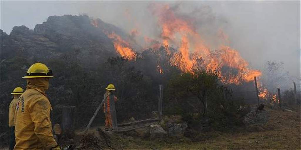 Por un plan integral para combatir los incendios forestales