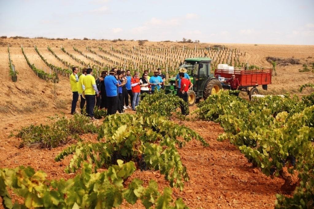El paro agrario descendió casi un 3% y en 4.838 desempleados en septiembre