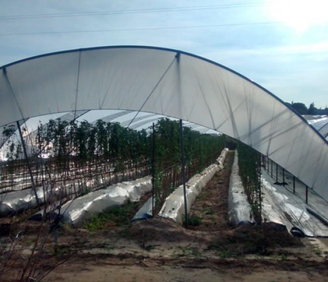 GIRA, una plataforma participativa para solucionar los residuos agrarios