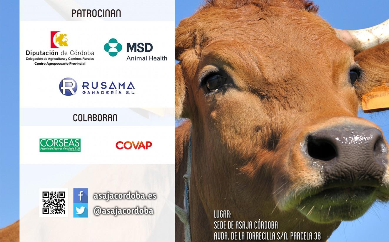 Asaja Córdoba celebra la III Jornada de Vacuno Extensivo