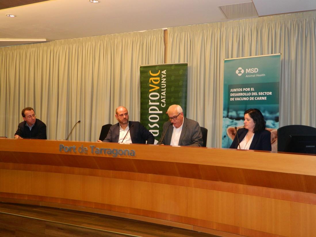 Asoprovac cataluña pone en valor el incremento de las exportaciones de vacuno de carne