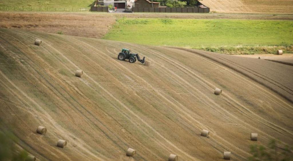 Durante 2017 se inscribieron en los registros oficiales 12.457 tractores nuevos
