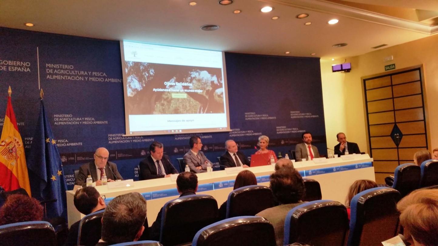 Nace Olivos Solidarios para preservar los árboles centenarios y recaudar fondos para ONG