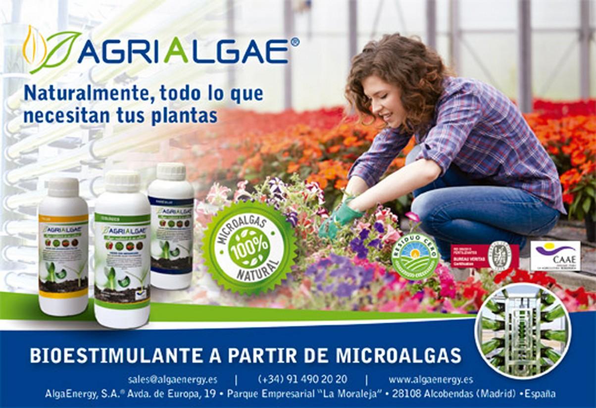 El proyecto Agrialgae, premio a la Innovación Empresarial de Agroexpo