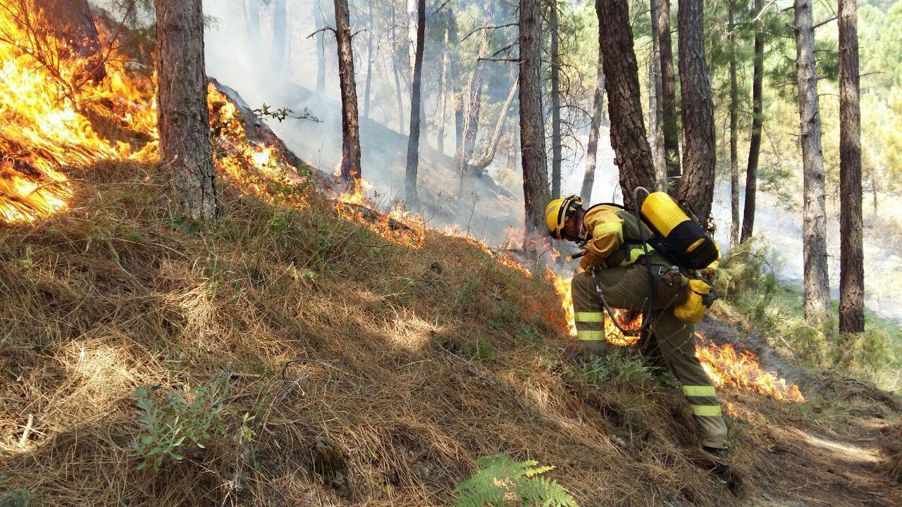El 2017, año muy negro por los incendios forestales que arrasaron 178.436 ha en toda España
