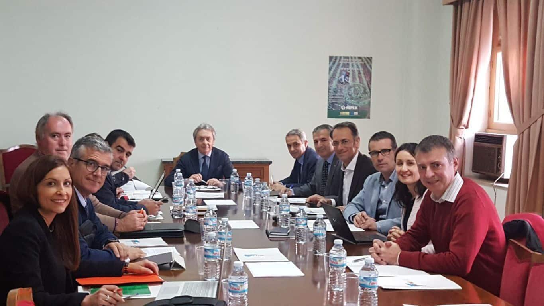 Productores europeos de tomate reclaman más controles a las importaciones marroquíes