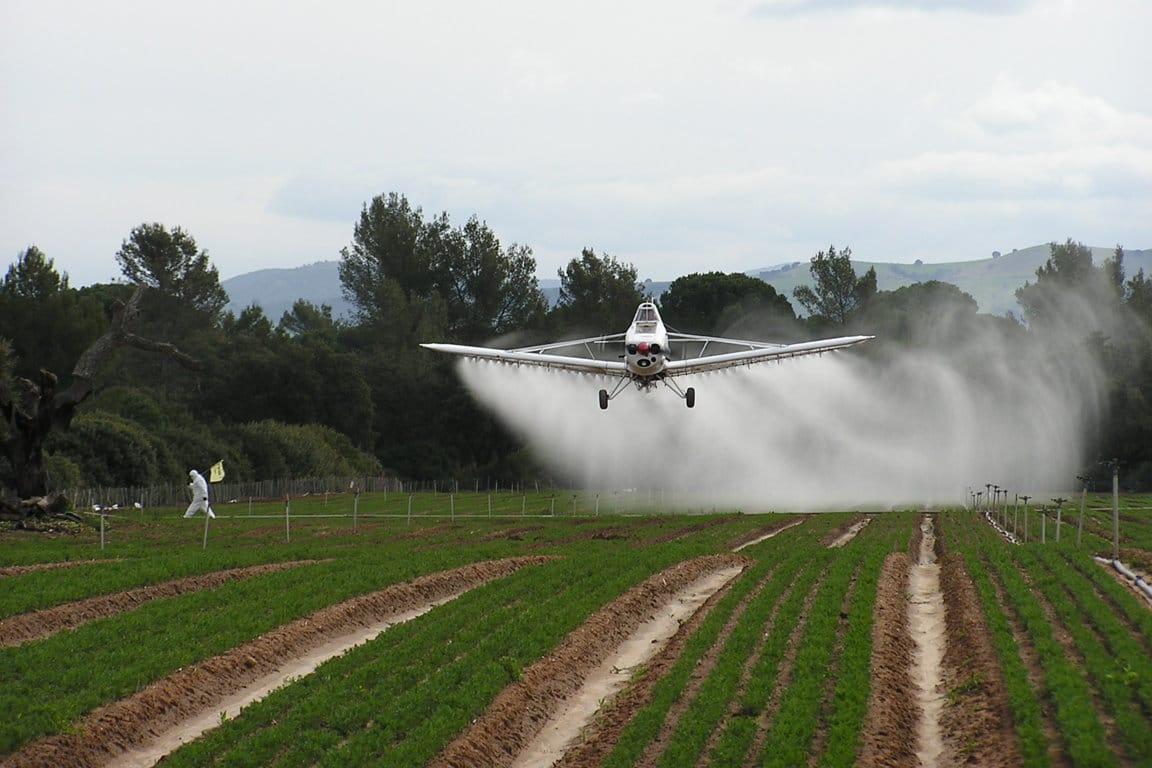 El PE aprueba crear una Comisión Especial sobre procesos de autorización de plaguicidas en la UE
