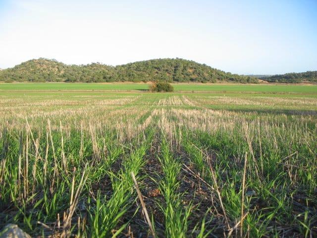 La Comisión Europea premia el proyecto Life+Agricarbon por su aportación a la lucha contra el cambio climático
