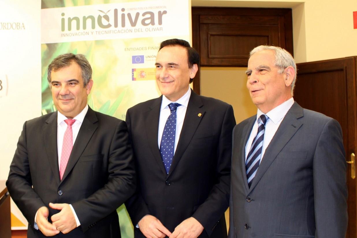 Innolivar invertirá 13 millones de euros en proyectos de innovación para el olivar