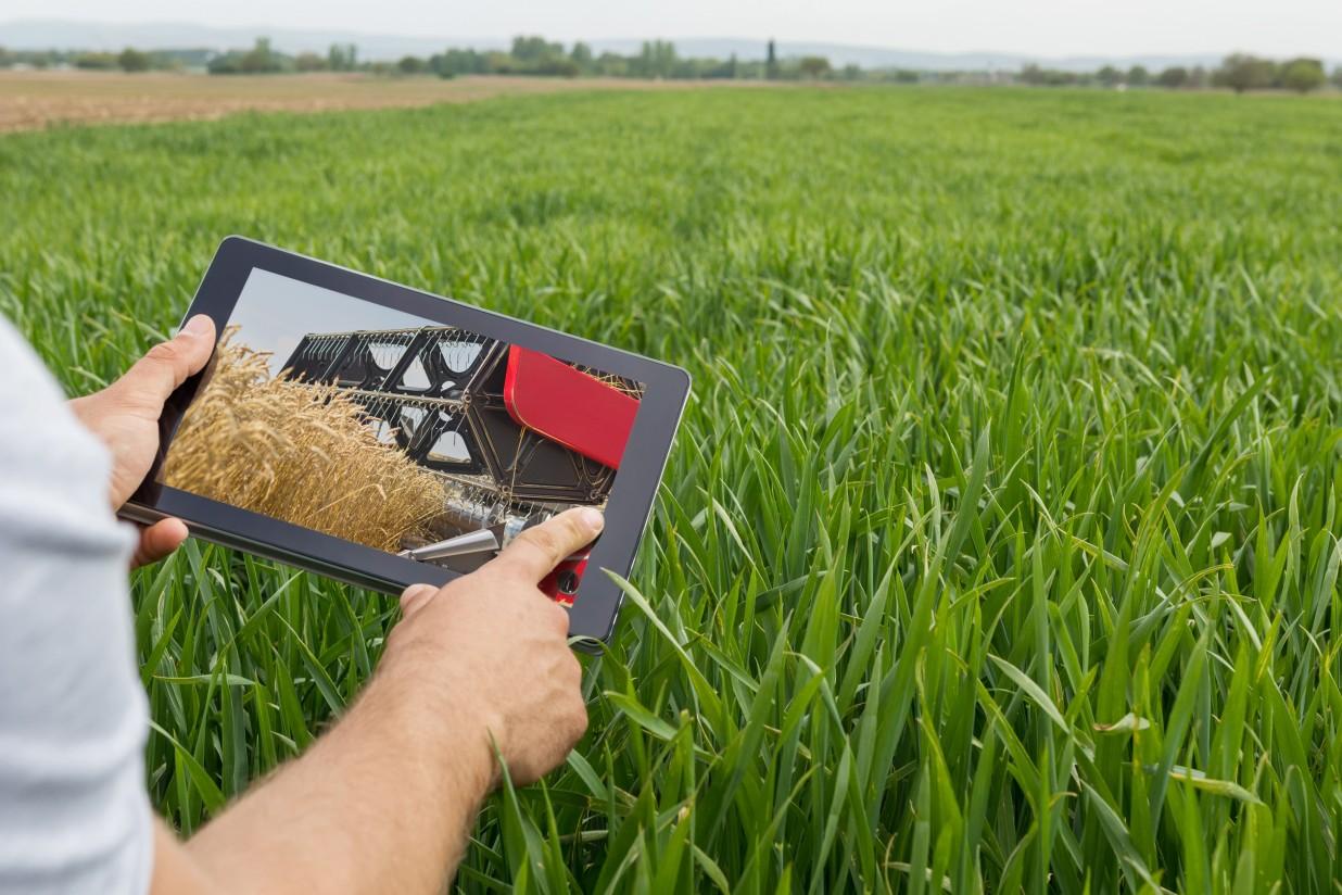 La industria agroalimentaria rompe la brecha digital del campo gracias al impulso del ecosistema AgroTech