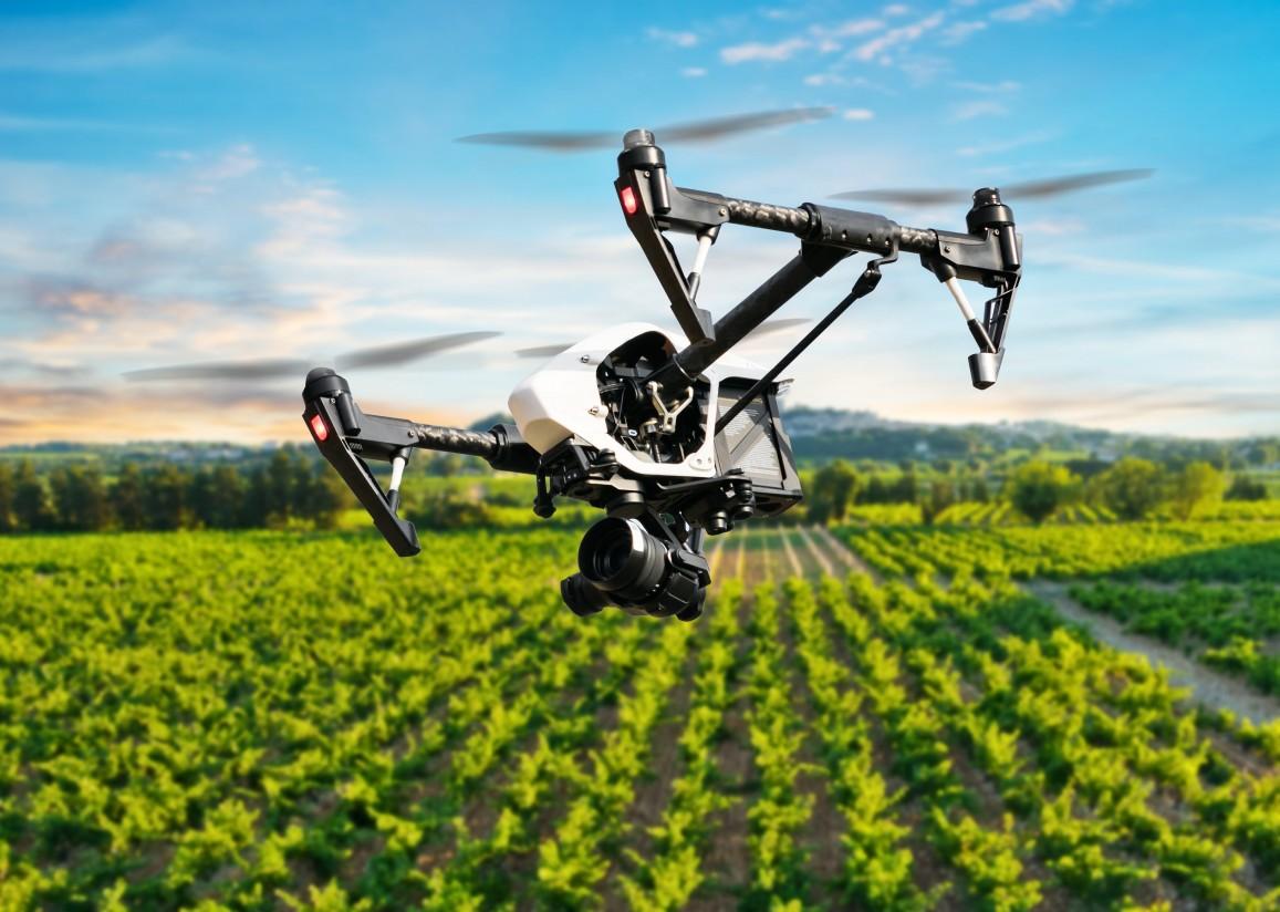Startup Europe Smart Agrifood Summit reivindica la innovación como clave del crecimiento