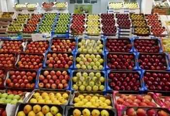 El mercado español de manzana y pera sigue arrastrando el lastre del veto ruso