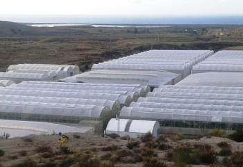 Agua de mar desalinizada para riego en los invernaderos de Almería
