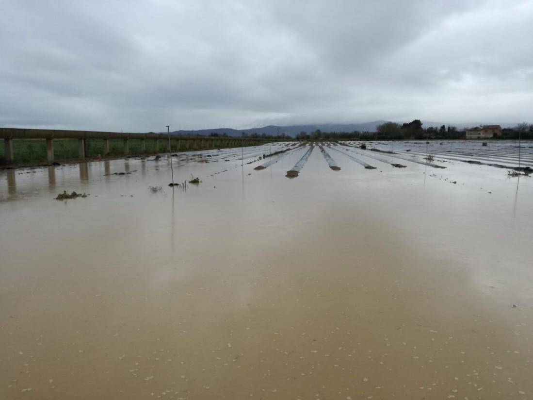 Inversión pública para reparar daños en producciones e infraestructuras agrarias por la riada del Ebro