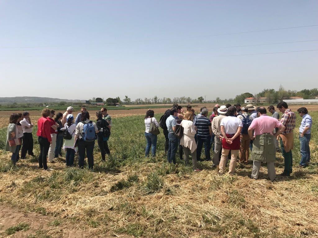 ICL Specialty Fertilizers participa en la 16ª reunión de la Red de Uso Eficiente del Nitrógeno en Agricultura