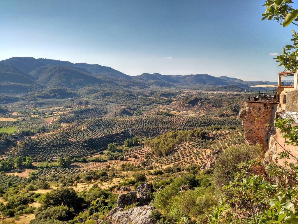 La producción comunitaria de aceite de oliva se prevé en 2,16 Mt en 2017/18