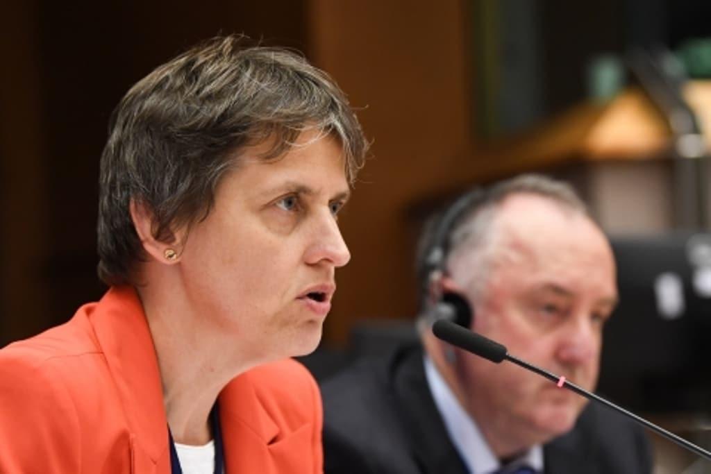 El CESE defiende que los pagos directos de la PAC se destinen solo a los agricultores activos