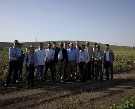 El grupo hispano-franco-italiano de ajo espera una baja producción