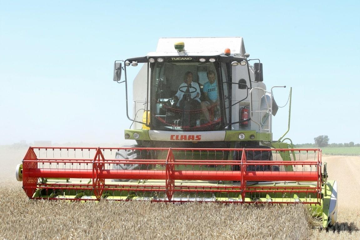 Castilla y León superará los 7 Mt de cereal de invierno en 2018, la segunda mejor cosecha del último lustro