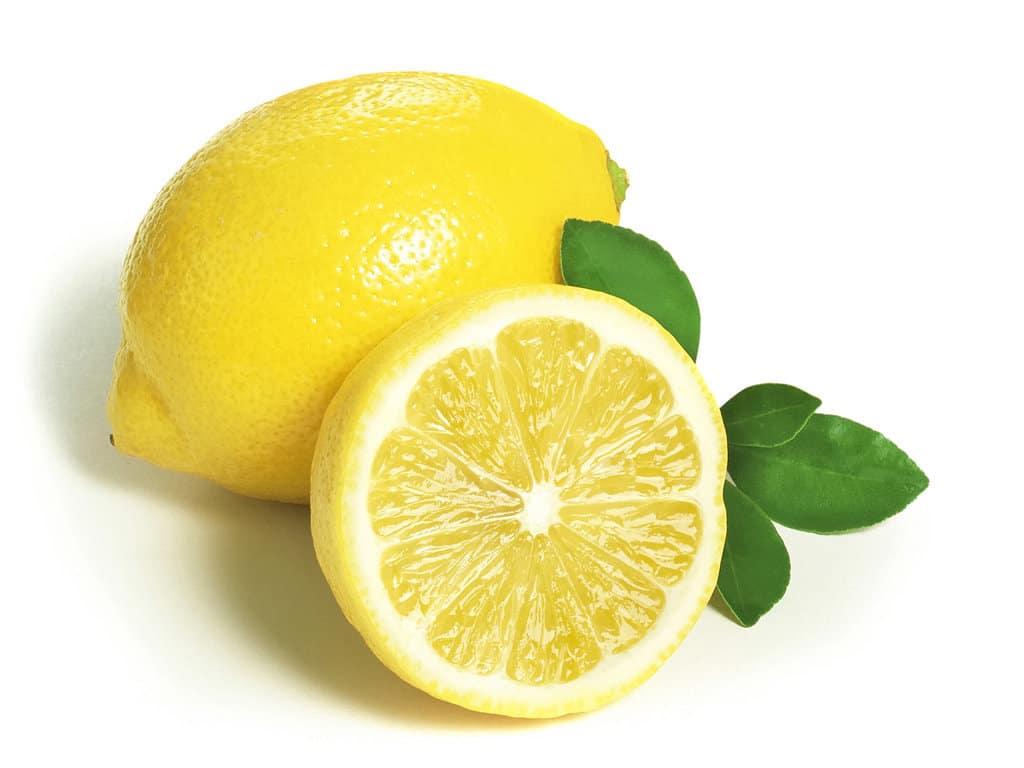 Ailimpo estima una producción de 1,3 Mt de limón en España