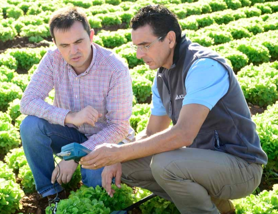 ICL lanza su nuevo catálogo de la gama Agromaster