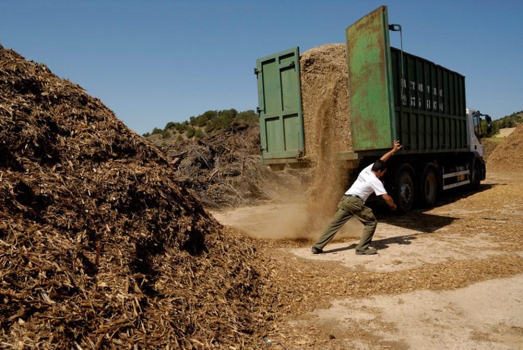 Plan de 12,5 M€ para producir combustible de biomasa sólida por microempresas y pymes de Extremadura