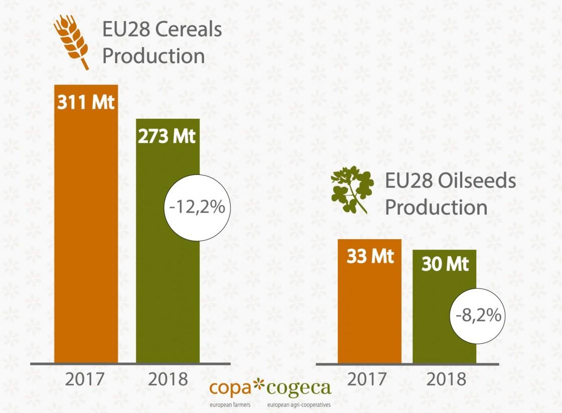 El COPA-Cogeca pide sacar lecciones del descenso de las cosechas de cereales y oleaginosas 2018/19 en la UE