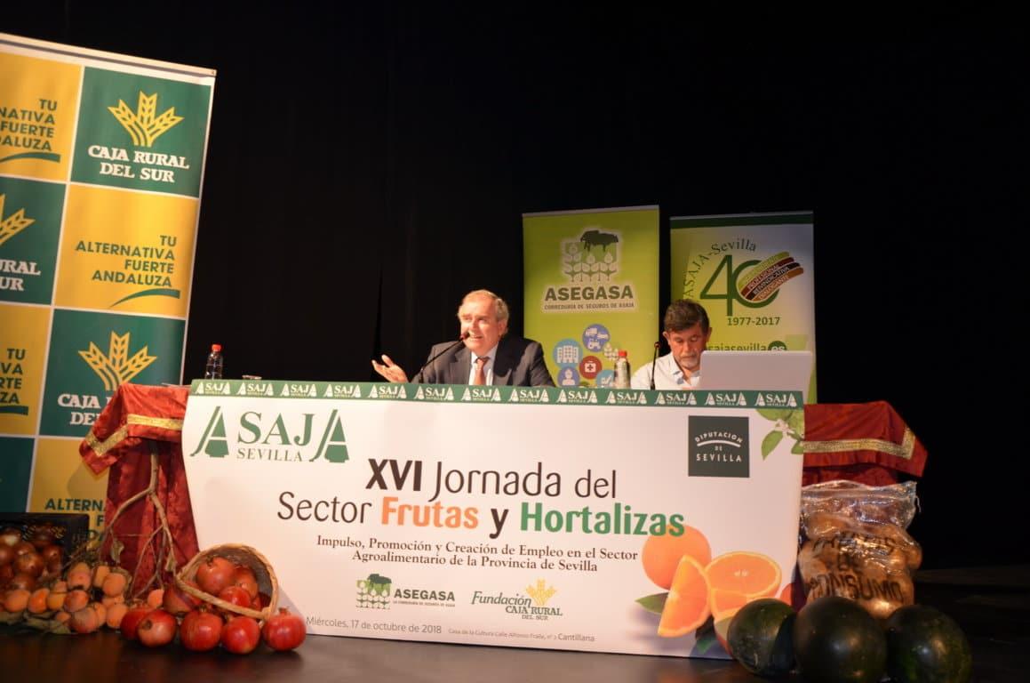 El MAPA avanza entre 7 y 7,2 Mt de producción citrícola en la nueva campaña 2018/19