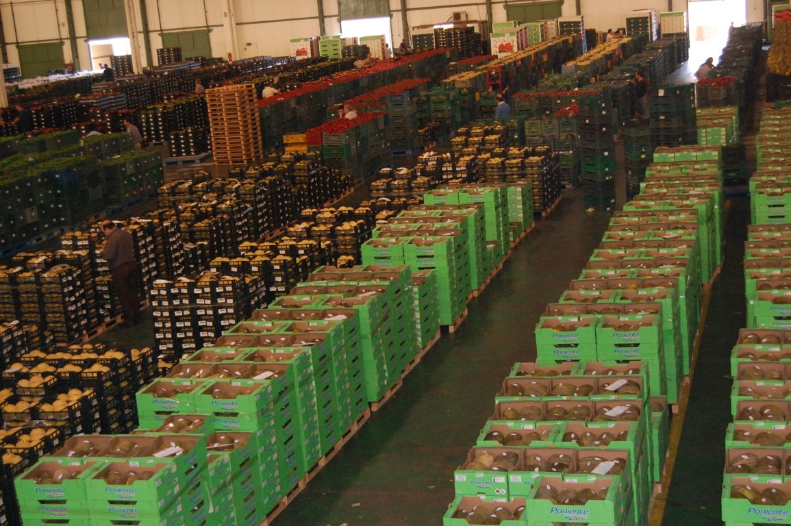 El MAPA prepara un RD para ampliar las organizaciones de productores reguladas a más sectores agrarios